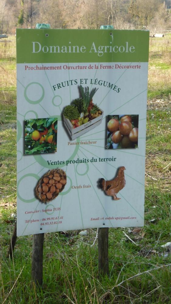 Les Rives du Loup du côté de Villeneuve-Loubet village... (6/6)