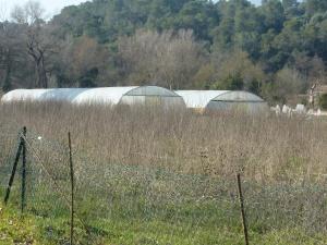 serres-domaine-agricole