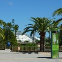 Promenade au Parc Phoenix de Nice...