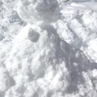 Un air de vacances et de neige...