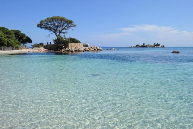 plage-de-palombaggia-jpg_e5143c_800