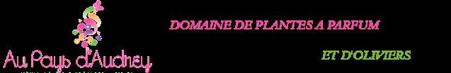 logo-Au-pays-d-Audrey.png